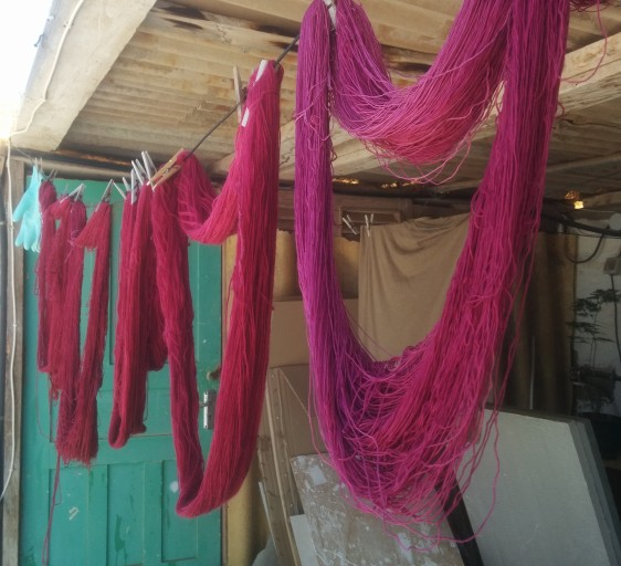 Dyeing with cochineal. Photo by Lisa Risager